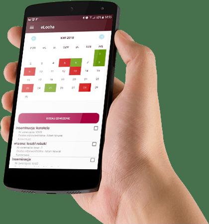 Telefon z uruchomioną aplikacją eLocha